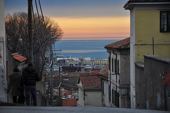 verso la bellezza. - Trieste (603 clic)