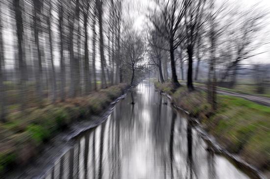 swamp. - Crema (326 clic)