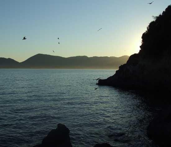 Tramonto a Lerici (3297 clic)