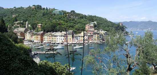 Portofino (3061 clic)