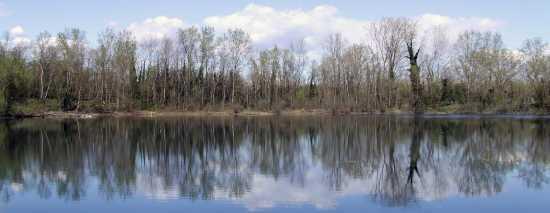 Ricengo, Lago Dei Riflessi (2411 clic)
