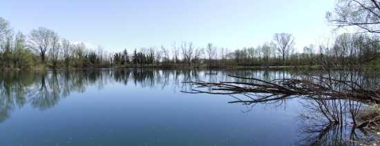 Ricengo, Lago Dei Riflessi (2612 clic)