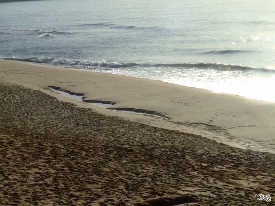 Mare d inverno - Pistis (2375 clic)