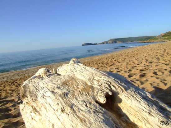 Mare d inverno - Pistis (2453 clic)