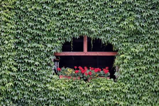 Tremosine, Villa (2311 clic)