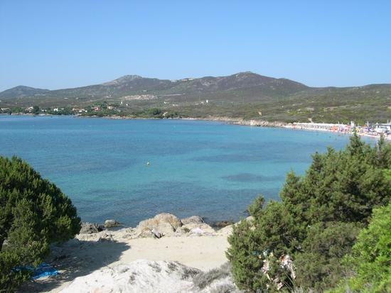 Spiaggia Bianca - Golfo aranci (1360 clic)