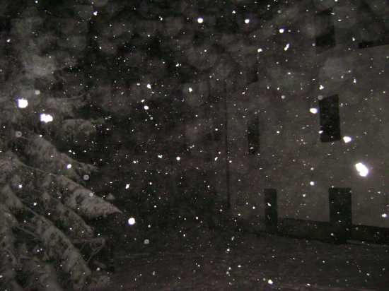 04-12-2009 Serata di Neve - Solignano (1651 clic)