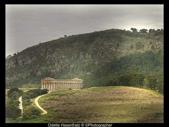 panoramica tempio di Segesta (636 clic)