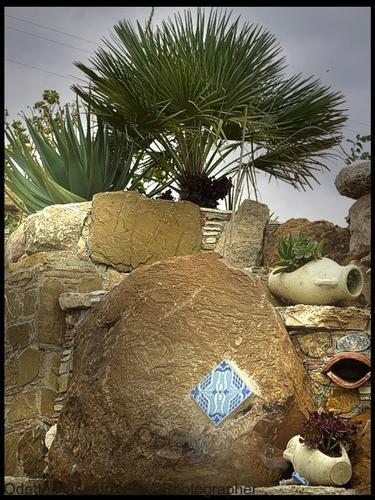 parete all'Agorà - Segesta (3138 clic)
