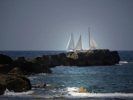 tall ships regatta 17-19.04.2010 - Trapani (2447 clic)