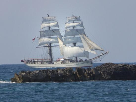 tall ships regatta 17-19.04.2010 - Trapani (2627 clic)