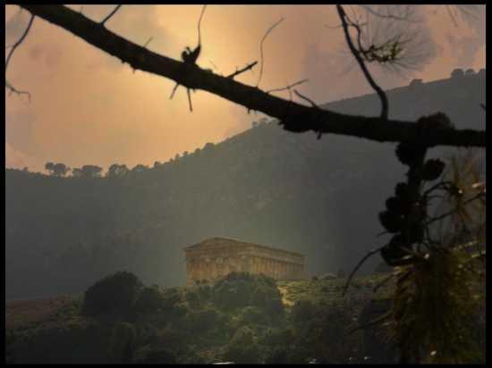 Tempio di Segesta (3240 clic)