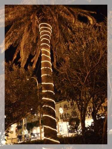 Christmas 2009 - Trapani (2378 clic)