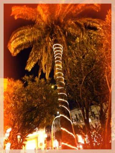 Christmas 2009 - Trapani (2591 clic)