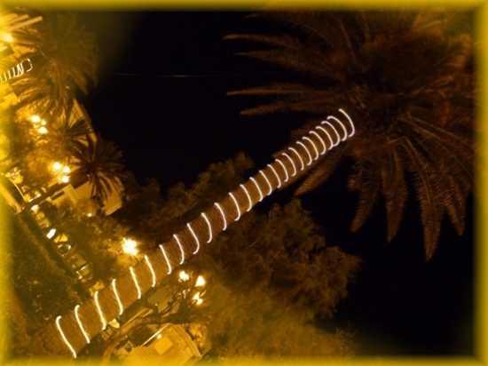 Christmas 2009 - Trapani (2201 clic)