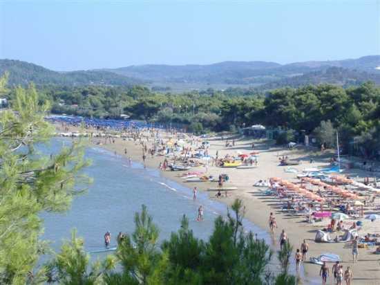 Vacanze Vieste del Gargano, Tenuta Montincello, Puglia (2761 clic)