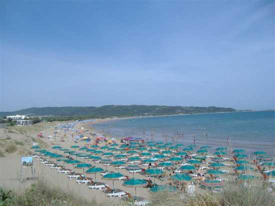 Vacanze Vieste del Gargano, Tenuta Montincello, Puglia (2958 clic)