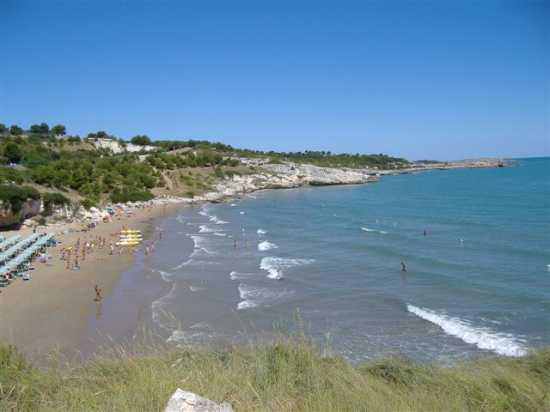Vacanze Vieste del Gargano, Tenuta Montincello, Puglia (3527 clic)