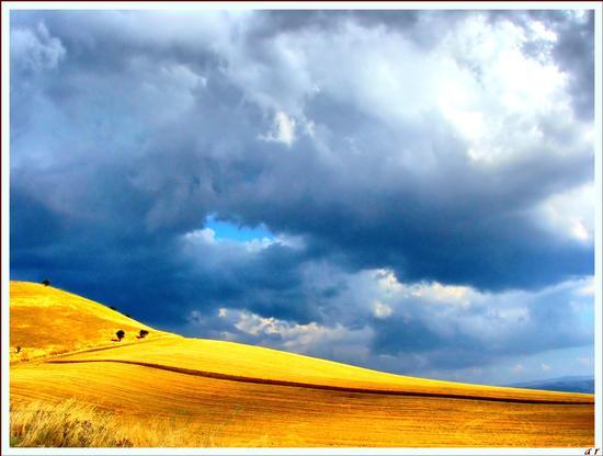 Deserto di grano - Ascoli satriano (5851 clic)
