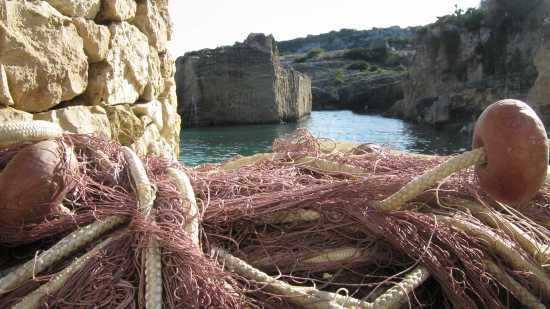 porticciolo-marina di novaglie - Corsano (1959 clic)