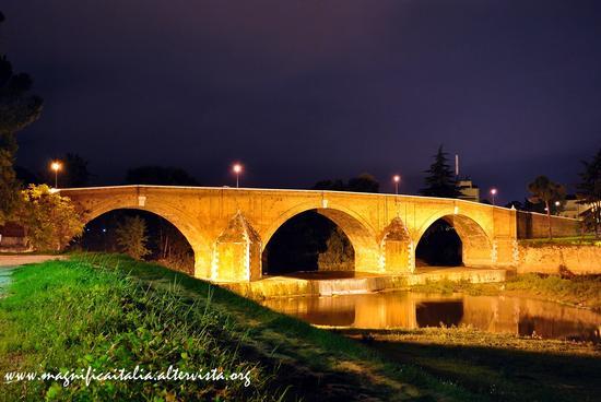 Ponte Vecchio by night - Cesena (5346 clic)