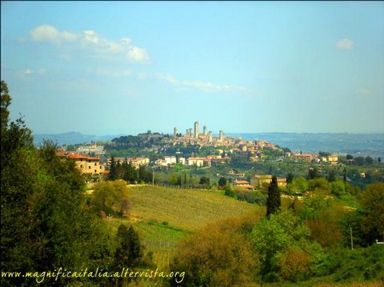 Grattacieli medievali - San gimignano (2821 clic)