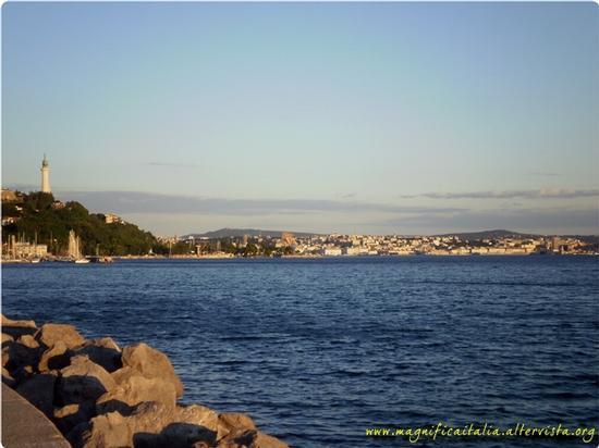 Panorama con sullo sfondo la citta' - Trieste (3669 clic)