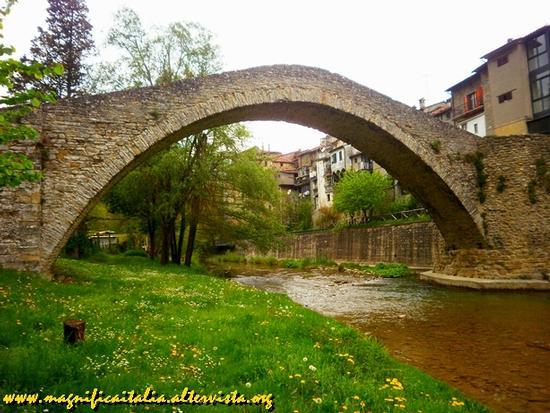 Ponte della Maesta' - Portico di romagna (2205 clic)