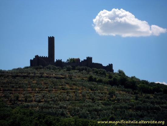 Castello di Montecchio Vesponi - Castiglion fiorentino (1539 clic)