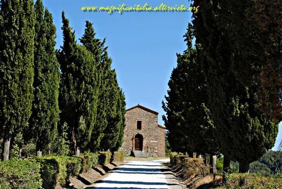 Vialetto che conduce all' antica Pieve di Monte Sorbo - Mercato saraceno (1353 clic)