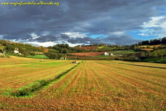 Country - Cesena (5092 clic)