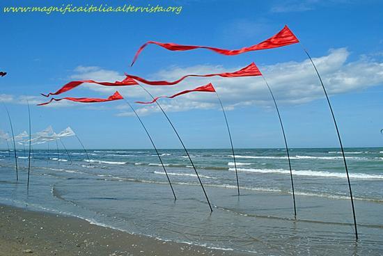 Bandiere al vento - Pinarella (2066 clic)