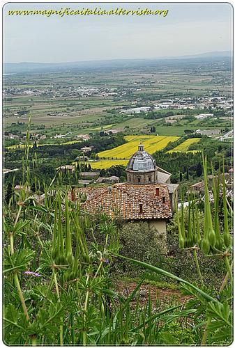 Panorama - Cortona (1444 clic)