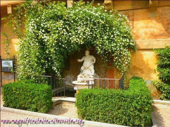 Il Bacchino all'interno del Giardino dei Boboli - Firenze (1875 clic)