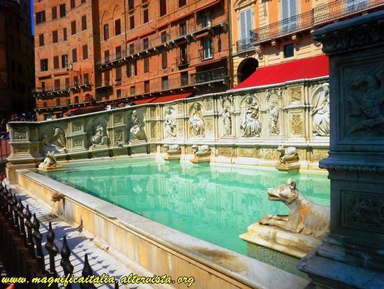 Fonte Gaia - Siena (2285 clic)