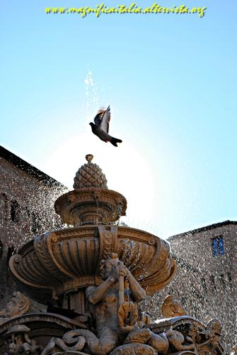 Fontana Masini in controluce - Cesena (3161 clic)