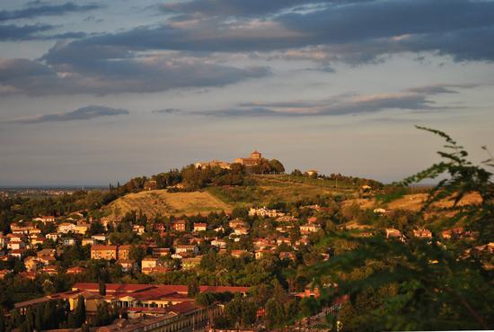 La Basilica del Monte e parte della citta' vista dal Colle dei Cappuccini - Cesena (4389 clic)