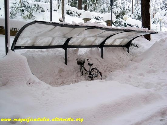 Dispersa nel mare di neve.... - Cesena (2552 clic)