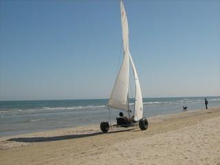 Bolidi a vela sulla battigia... - CERVIA - inserita il 20-Jan-10