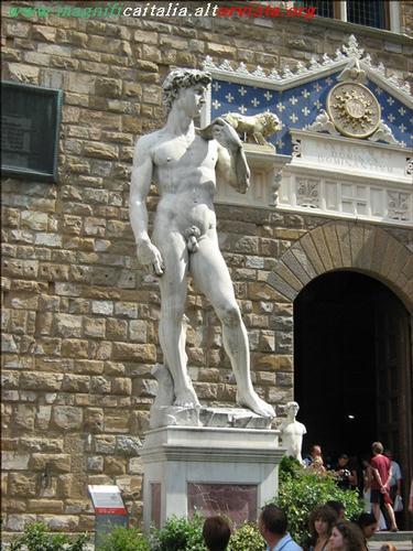 Il David di Michelangelo - Firenze (4577 clic)