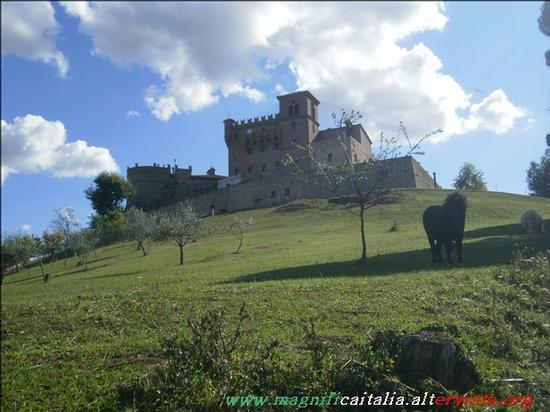 Castello - Montenovo (2221 clic)