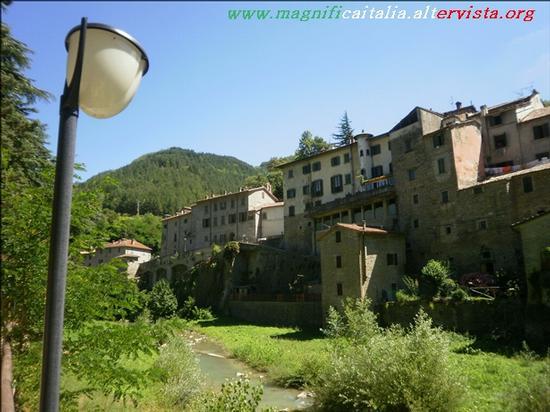 Il borgo - Premilcuore (2174 clic)