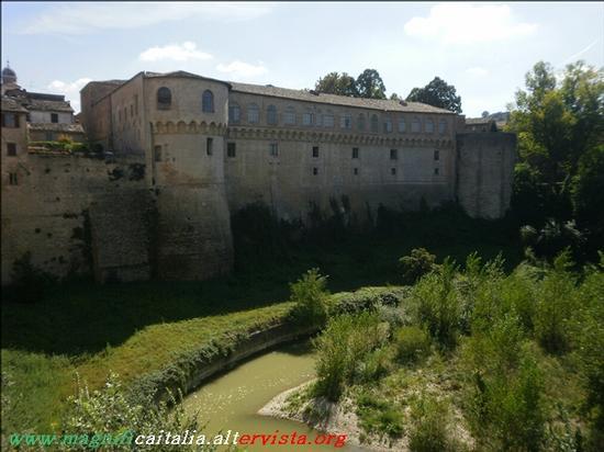 Palazzo Ducale - Urbania (3263 clic)