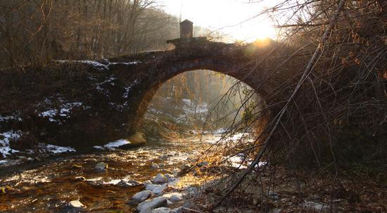 Ponte in decadenza, torrente Agogna, Armeno (1509 clic)