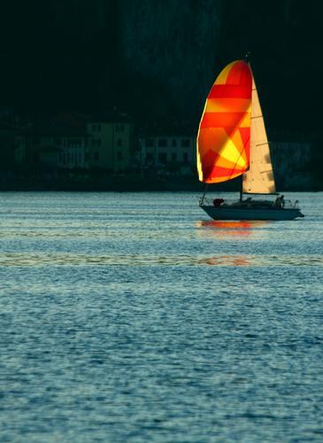 In vela sul lago, Lago Maggiore (Verbano) aprile 2011 - Arona (2389 clic)