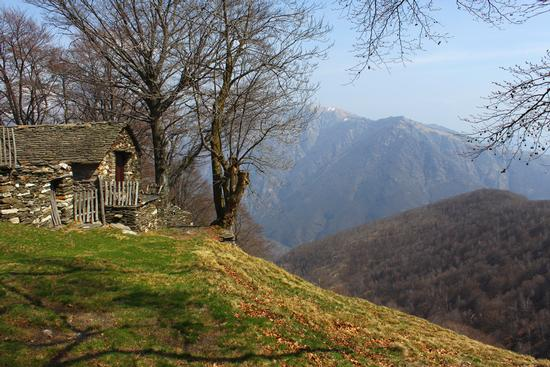 Casaracce parco naturale della Val Grande - Mergozzo (2135 clic)