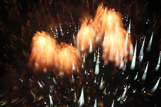 Fiori di fuoco, Fuochi di San Vito a Omegna, lago d'Orta (Cusio) 28 agosto 2011 (2757 clic)