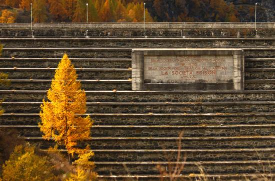 Diga all'alpe dei cavalli, Val ANtrona, Ossola ottobre 2013 - Antrona schieranco (864 clic)