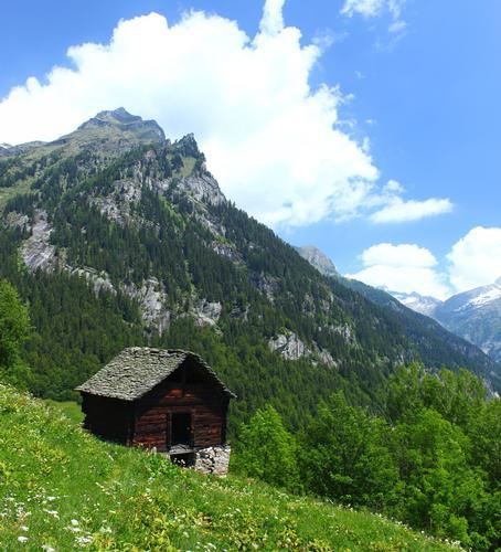 Tipica baita Walser, val Antigori, val d'Ossola giugno 2012 - Premia (3648 clic)