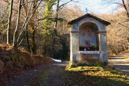 Cappelletta nel bosco, Brovello Carpugnino (861 clic)